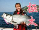 DVD【児島玲子「100魚種ザ・ムービー・モンスターシーバスTRIP」】予告