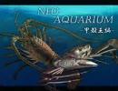 【蟹になりたい君へ】ネオアクアリウム-甲殻王【エビを奢ってやろう】