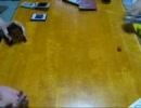 遊戯王で闇のゲームをしてみた5D's その11 【カレーVSココア】