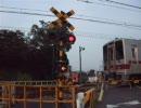 糖武鉄道桜丘鉄道管理局 第⑨話:乗り入れか延伸か