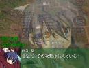 【革新PK】鍵山雛の野望 七十七章「超・大乱戦!」