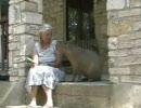 カピバラとおばあちゃん