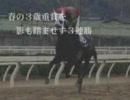 第4回全日本アラブグランプリ 紹介FLASH(その2)