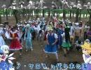 【パワー】チルノ・ケロ9 in 代々木公園