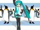 【MikuMikuDance】 ペンギン で  ね~え? を踊っ(ry  【おうさまペンギン】