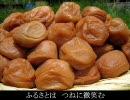 【KAITO】和歌山県民歌【ご当地ソング】