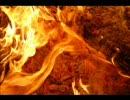 Gas Met Die Zooi (Tha Playah Remix)
