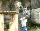 ユキヒョウの赤ちゃん ユキチ - 6 -
