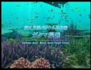 FOREVER BLUE 海の呼び声 Pert.2