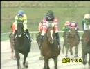 【競馬】 2009 MCS南部杯 エスポワールシチー 【ちょっと盛り】