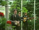 The beatles  Paperback writer