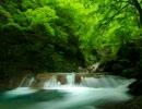 自然の音~京都北山のせせらぎの音