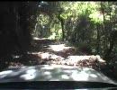 【道路動画】ハンドル連動カメラで酷道418号線を撮影しました・その1/4