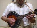 いきものがかり『YELL』を弾いてみました【マンドリン】