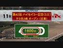 2009年 第42回ハイセイコー記念(SII) ショウリュウ