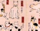 猫飼好五十三疋02