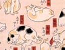 猫飼好五十三疋08