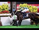 【競馬】01'香港ヴァーズ ステイゴールド【ラジオ実況版】
