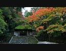 【HD】2009年紅葉の京都・滋賀に行ってきたその(1)【法然院~南禅寺】