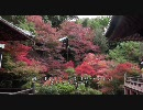 【HD】2009年紅葉の京都・滋賀に行ってきたその(2)【南禅院~毘沙門堂】