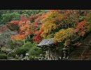 【HD】2009年紅葉の京都・滋賀に行ってきたその(6)【金蔵寺~】