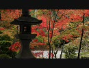 【HD】2009年紅葉の京都・滋賀に行ってきたその(7)【大原野神社~揚谷寺】