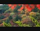 【軽量版】2009年紅葉の京都・滋賀に行ってきた④~⑦【善峯寺~】