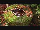 【FULLHD】2009年紅葉の京都2【1920x1080】
