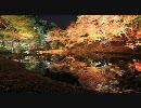 【HD】2009年紅葉の京都・滋賀に行ってきたその(17) [終]【高台寺】