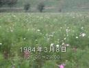 谷山浩子のオールナイトニッポン 1984年03月08日