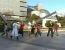 【白川公園で】ケロ⑨destiny【踊ってみた】