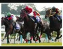 【競馬】30分耐久ザ・チャンピオン