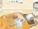 @らりおのカワイイ(笑)は正義のバトレボ実況『POKETOPIA杯番外編』