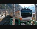 【JR東日本】奥多摩駅に到着するE233系電車