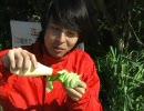 新鮮取れたての春野菜が食べたい MEGWIN TV