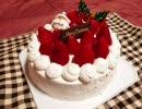 クリスマスケーキ作りました【木の実】