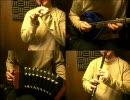 東方妖々夢「ネクロファンタジア」をアイリッシュ楽器等で弾いてみた。