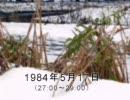 谷山浩子のオールナイトニッポン 1984年05月17日