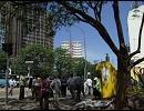 世界の大都市画像集⑤ アフリカ編