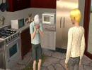 【APヘタリア@Sims2】 犬のいる生活 (番外編)