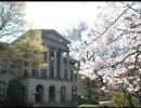青山学院大学キャンパスフォト