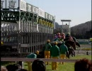 【東京】2010 年2月7日東京 1R~11R ダイジェスト【競馬場】