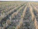 谷山浩子のオールナイトニッポン 1984年08月09日