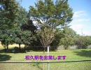 ●八高線・普通列車(上り)/松久~寄居間