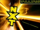 【WWE NXT Theme】American Bang - Wild and Young