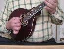 マンドリンで「The Road to Lisdoonvarna」を弾いてみました【アイリッシュ】