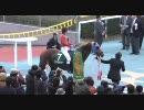 【競馬】 2010 アーリントンカップ コスモセンサー 【ちょっと盛り】