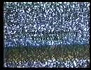 Roadkill - Fall Line Films 1/3